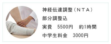 神経伝達調整(NTA) 部分調整込 実費 5000円 約1時間